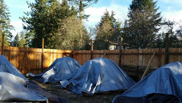 THP- 5 tents